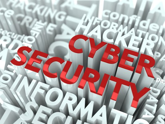 Brand New Security College Offers Exciting Career Options