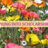 Spring into Scholarships for College!