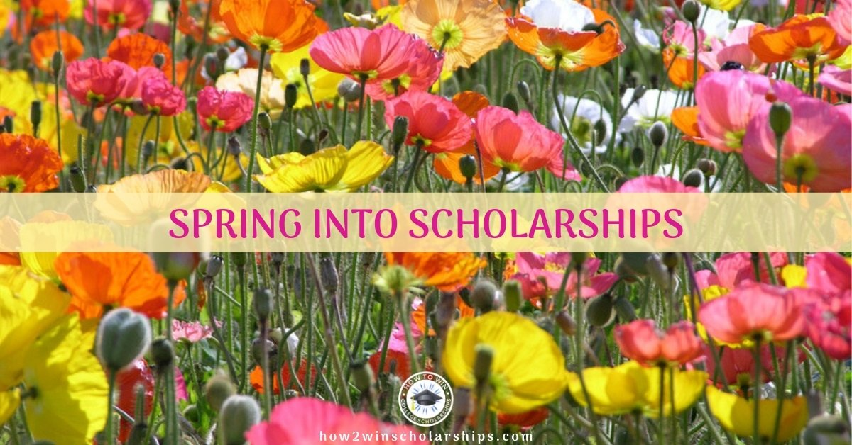 College Scholarship Tip: Spring into Scholarships and FIND More Awards!