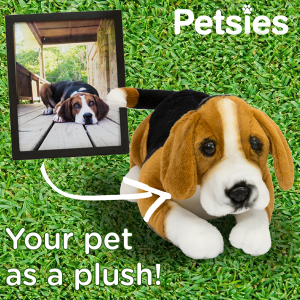Petsies - Make a pillow of your pet!
