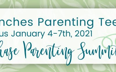 Next Phase Parenting Summit